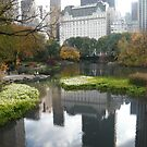 Plaza Hotel Reflecting in Central Park Lake, Fall Colors by lenspiro