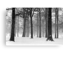 Snowy Day in Pelham Bay Park Canvas Print