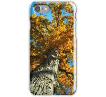 Mighty Oak Tree iPhone Case/Skin