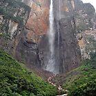 Angel's Falls by Carlos Rodriguez