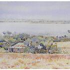 Wheatfields old farmhouse - Dumbleyung Lake by scallyart