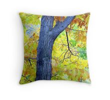 Autumn Leaves in Central Park  Throw Pillow