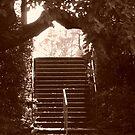 Steps by Joan Wild