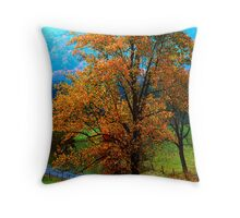 AUTUMN,CADES COVE  Throw Pillow