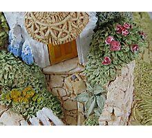 Miniature Cottage _ Garden detail Photographic Print