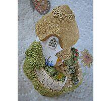 Miniature Cottage Photographic Print