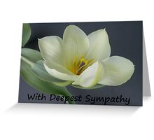 Greeting Card Sympathy white tulip Greeting Card