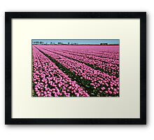 Here they still flowered....... Framed Print