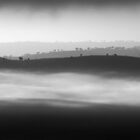 Hills in the Mist by Sarah Donoghue