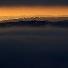 Misty Morn by Sarah Donoghue