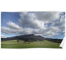 Meander valley beauty - Tasmania Poster