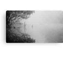Fog Poker Canvas Print