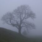 The Fog by Mike Topley