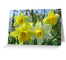 Happy Spring Greeting Card