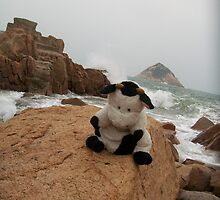 Moo Moo and bug looking at each other on a rock by the ocean by Joseph Green