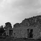 Grace Dieu Priory 3 by Mike Topley