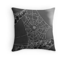 Spiders Web - Capturing the early morning dew Throw Pillow