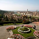 Firenze overview  by bertipictures