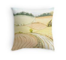 Long Country Road Throw Pillow