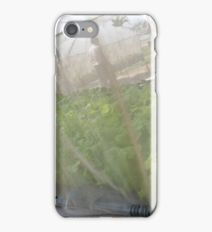 Hydroponic Vegetables iPhone Case/Skin