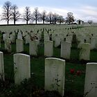 Serre Road Cemetery No. 2 - France by Marilyn Harris