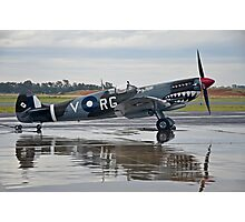 Spitfire, Grey Nurse Photographic Print
