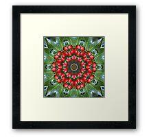 Holly Kaleidoscope Framed Print