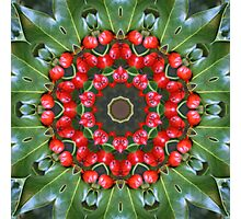 Holly Kaleidoscope Photographic Print