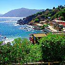 Bay of Quintay II by Daidalos