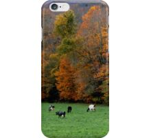 Cows and Foliage iPhone Case/Skin