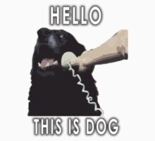Hello, This is dog V1 by dbatista