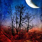 """Moon Struck"" by Heather Thorning"