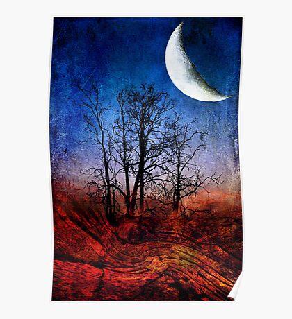 """""""Moon Struck"""" Poster"""