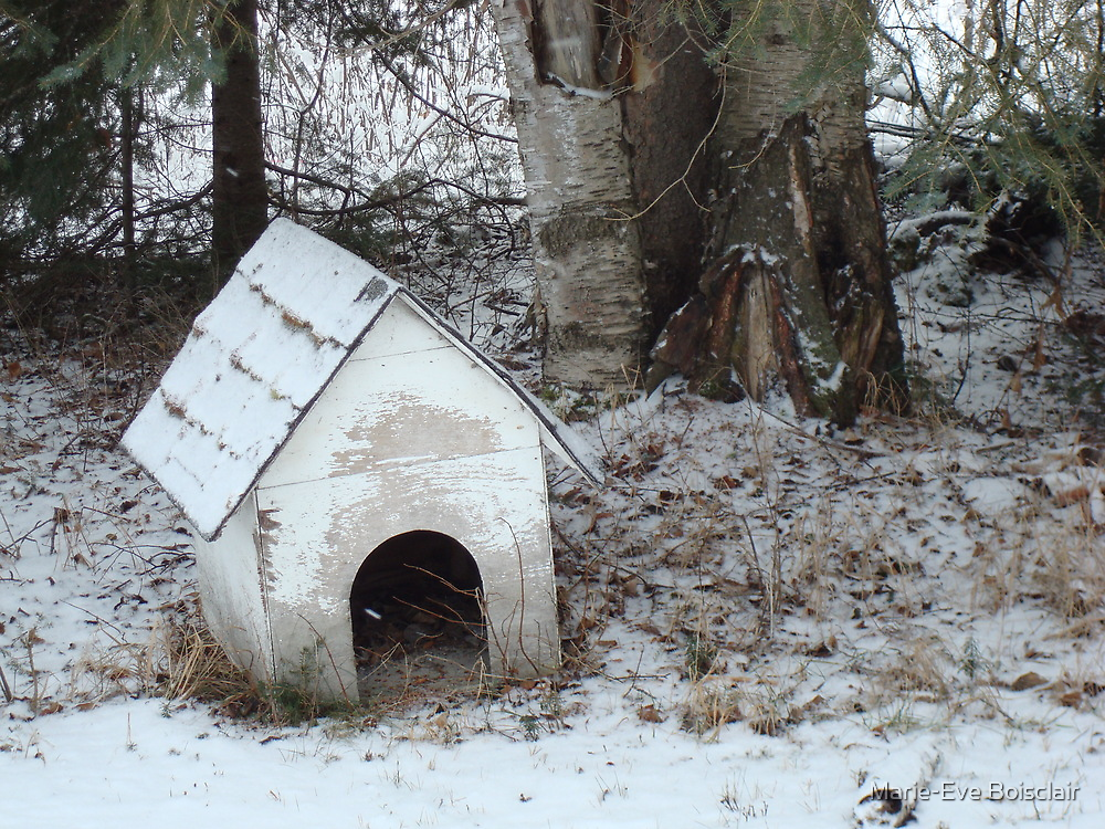 The old dog house by Marie-Eve Boisclair