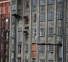 Walls full of windows by Celia Strainge