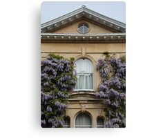 Wisteria Window Canvas Print