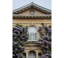 Wisteria Window Photographic Print
