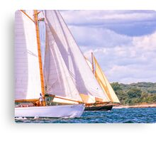 Sailing Together Canvas Print