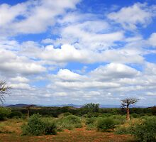 North of Soutpansberg/Noord van Soutpansberg by Antionette