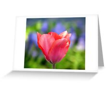 The Poetry of Spring Greeting Card