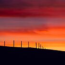 sunset I by Erwin G. Kotzab