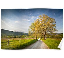 Hyatt Lane in Cade's Cove - Smoky Mountains Poster