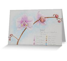 Orchid Sketch Greeting Card