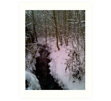 Snow and Water Art Print