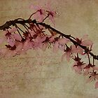 Fading Blossoms by NancyMorgantini