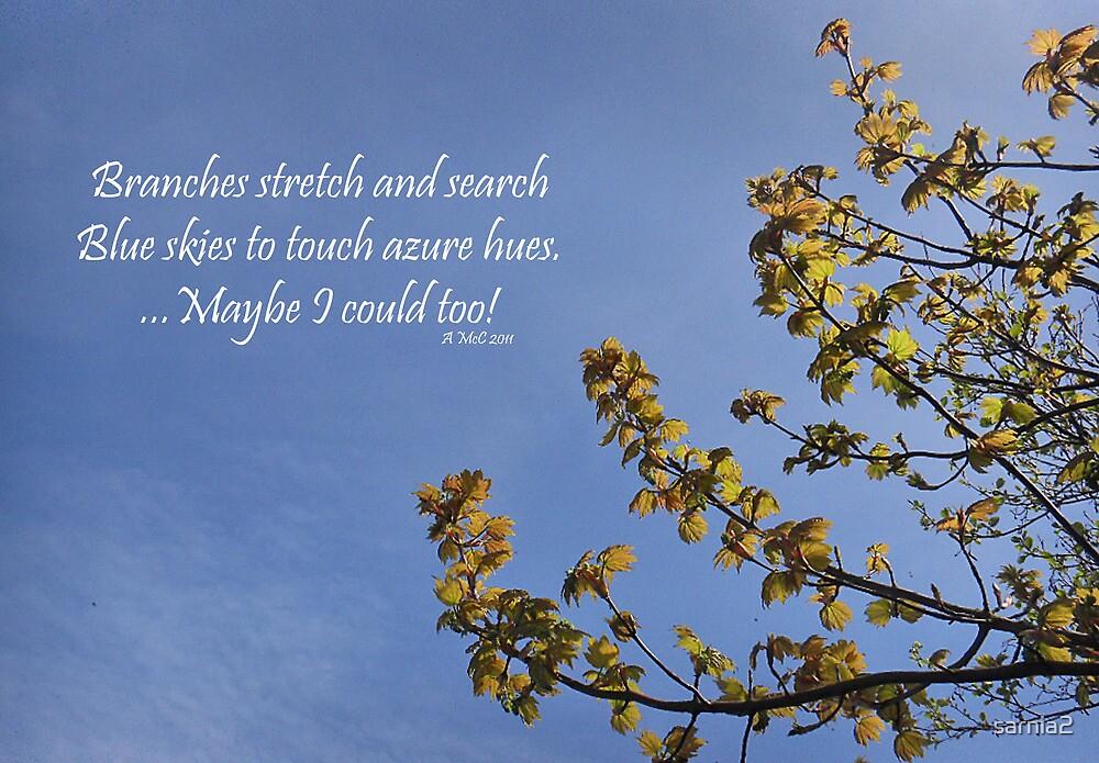 Haiku Branches by sarnia2