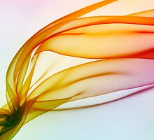 organza as abstract  background  by Medeu