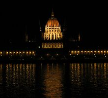 Hungarian Parliament At Night by wiggyofipswich
