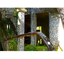Paronella Park Photographic Print