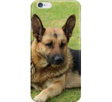 German Shepherd in a Field iPhone Case/Skin